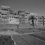 Elena Dak Yemen Sana 12
