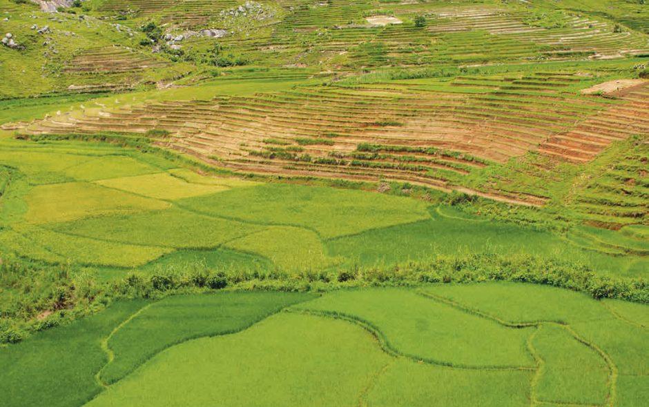 Madagascar: Un luogo di approdo